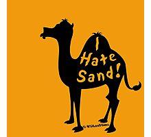 Camel Gripe Photographic Print