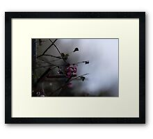 Atmospheric Framed Print