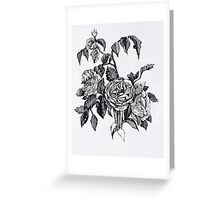 Realistic roses. Black and white hand drawing pattern Greeting Card
