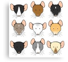 Ratty Faces Canvas Print