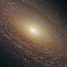 Spiral Galaxy NGC 2841 by StocktrekImages