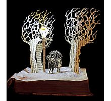 Tumnus and Lucy Narnia book sculpture Photographic Print