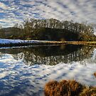 Reflections In The Brathay by Jamie  Green