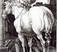 Albrecht Durer,  THE LARGE HORSE by Adam Asar