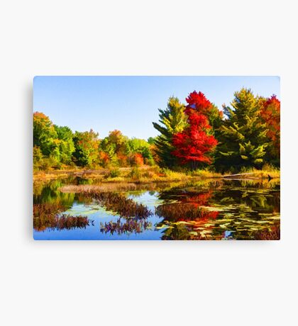 Impressions of Forests - Bright Red Maple, Reflected Canvas Print