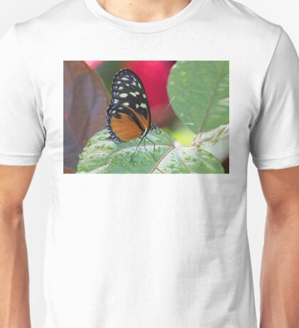 Butterfly and Wet Leaf Unisex T-Shirt