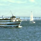 Harbor Island ~ San Diego, California ~ Boats and Sightseeing by Marie Sharp