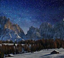 Sasso Lungo - Dolomites by Delfino