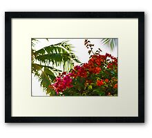 Tropical Impressions - Bougainvilleas and Palm Fronds in the Sky Framed Print