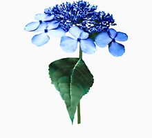 Delicate Blue Lacecap Hydrangea Womens Fitted T-Shirt