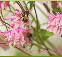 Happy Mother's Day Bee by Terri Waters