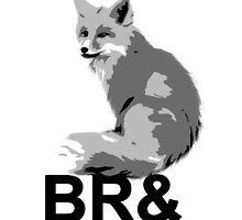 Br& New Fox by Cats 13