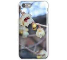 Yellow pale. iPhone Case/Skin