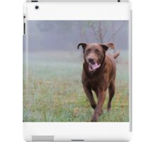 Gala The Chocolate Lab iPad Case/Skin