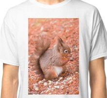 Red Squirrel Classic T-Shirt