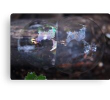 Two Bubble On Wood Canvas Print