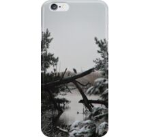 Heron Perched on Log iPhone Case/Skin
