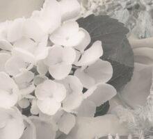 White Hydrangea Flower And Fringed Sari  Sticker