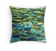 colorful stone wall Throw Pillow