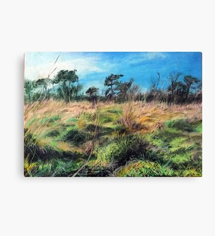 Smestow Valley Nature Reserve. Canvas Print