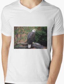 National Aviary Pittsburgh Series - 10 Mens V-Neck T-Shirt