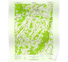 New York NY Pine Bush 128999 1956 24000 Poster