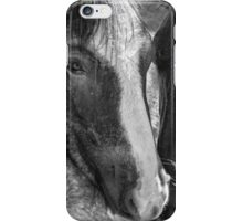 Bachelor Stallions - Pryor Mustangs, bw iPhone Case/Skin