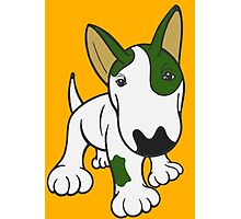 Bull Terrier Eye Patch Pup White & Greens Photographic Print
