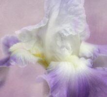 Lavender in the Garden Sticker