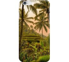 Rice Terraces in Bali at Sunset iPhone Case/Skin