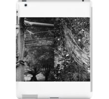 Abandoned Diptych iPad Case/Skin
