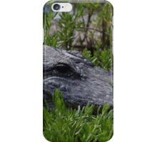 Waiting and Preying iPhone Case/Skin
