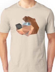 Banjo Polygon Unisex T-Shirt