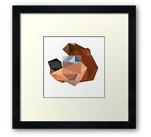 Banjo Polygon Framed Print