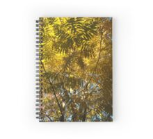 sunlight in the trees Spiral Notebook