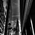 Shard by Andrew Pounder