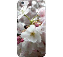 Sakura Bunches iPhone Case/Skin