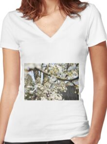 Sakura Bursting Women's Fitted V-Neck T-Shirt