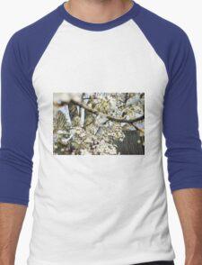 Sakura Bursting Men's Baseball ¾ T-Shirt