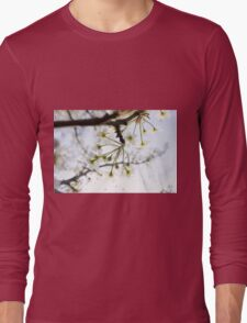 Radiant Blossoms Long Sleeve T-Shirt