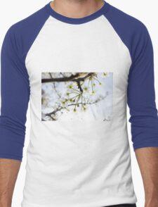 Radiant Blossoms Men's Baseball ¾ T-Shirt
