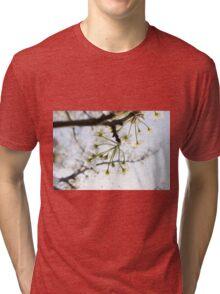 Radiant Blossoms Tri-blend T-Shirt