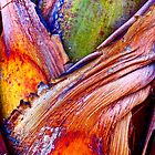 """""""Palm Abstraction"""" I B by AlexandraZloto"""