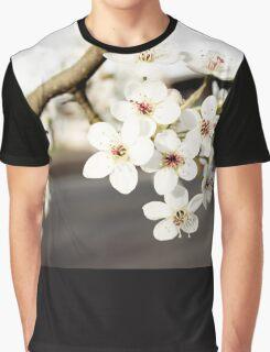Sakura Road Graphic T-Shirt
