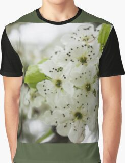 Speckled Sakura Graphic T-Shirt