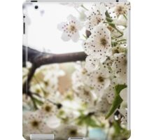 Speckled Blossoms iPad Case/Skin