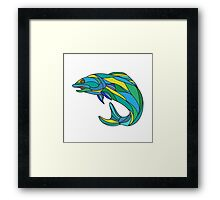 Atlantic Salmon Jumping Drawing Framed Print