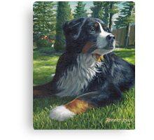 """Romeo"" Bernese Mountain Dog Canvas Print"