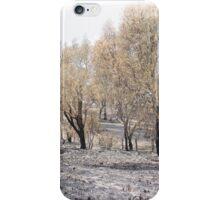 SOFT LANDSCAPES 1 iPhone Case/Skin