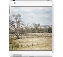 SOFT LANDSCAPES 2 iPad Case/Skin